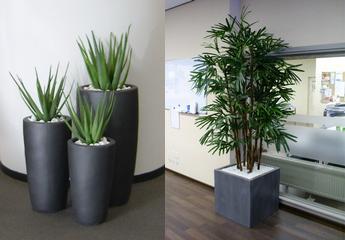 zijdebeplanting_plantenbak